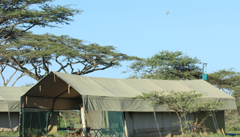 Mobilies Camp im Serengeti Nationalpark